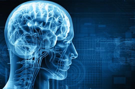 İnsan Beyninin Bilinmeyen 20 Özelliği