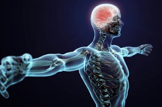 İnsan Vücudunun Gariplikleri