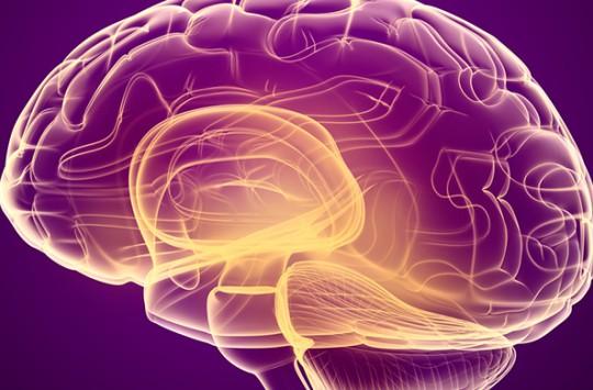 Beyni Yere Düşen Adamın Açıklanamayan Hikayesi